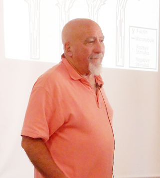 Stuart Hameroff at Foundations of Mind 2